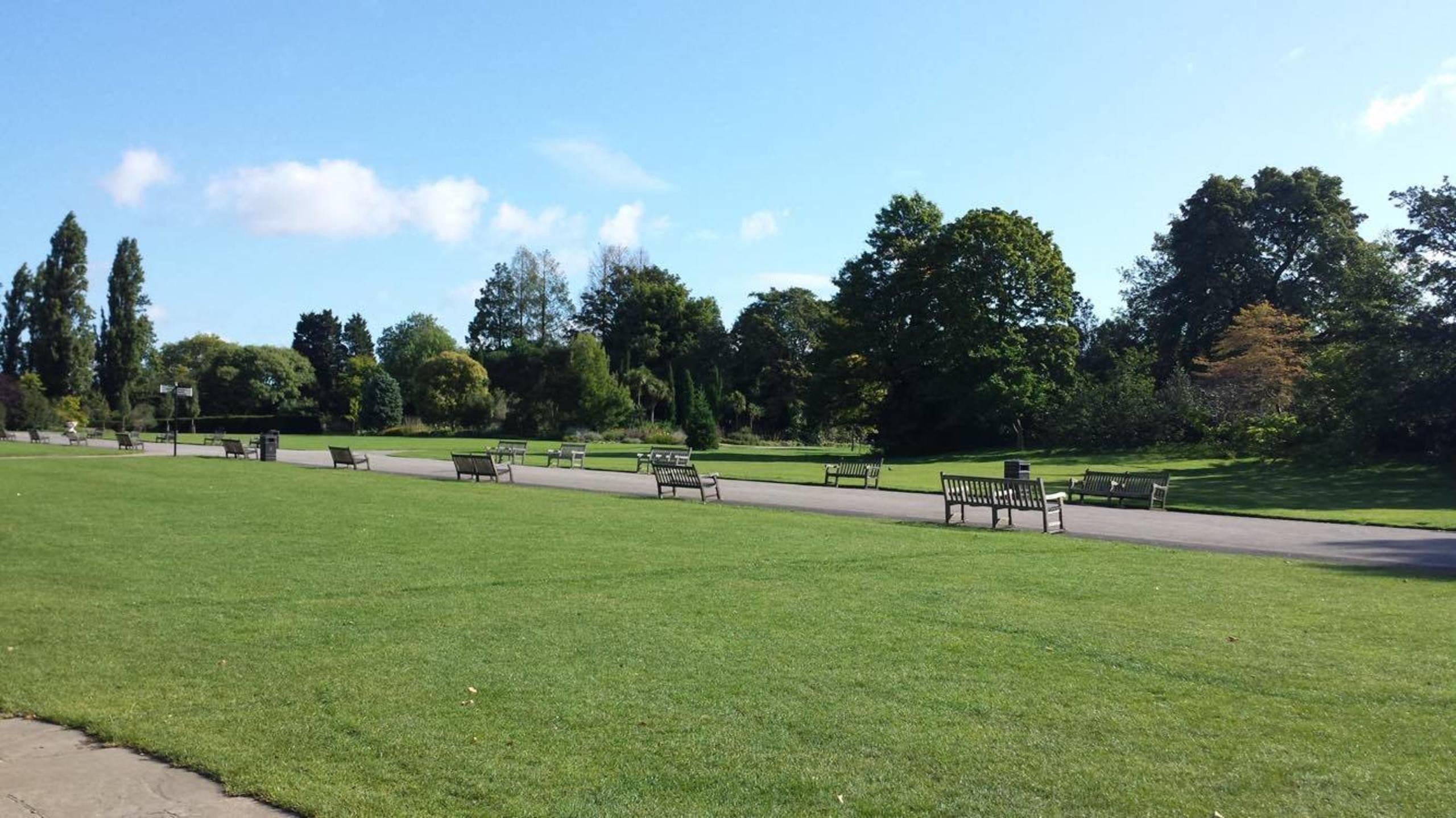 ロンドンの中心地からほど近い場所にある公園、Regent's Park。筆者の通う学校の裏にある。