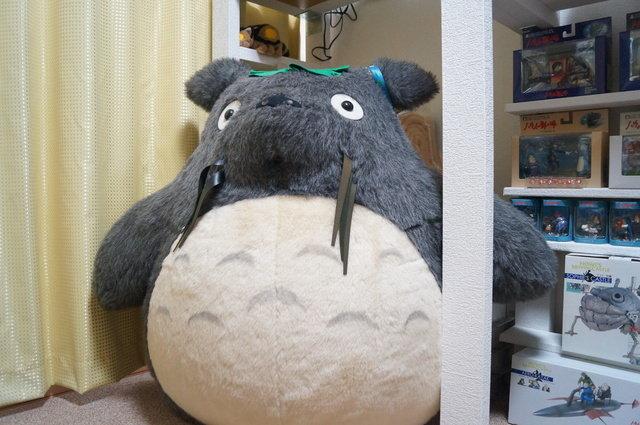 トトロの巨大ぬいぐるみは、部屋の中でも特に強い存在感を放っている。