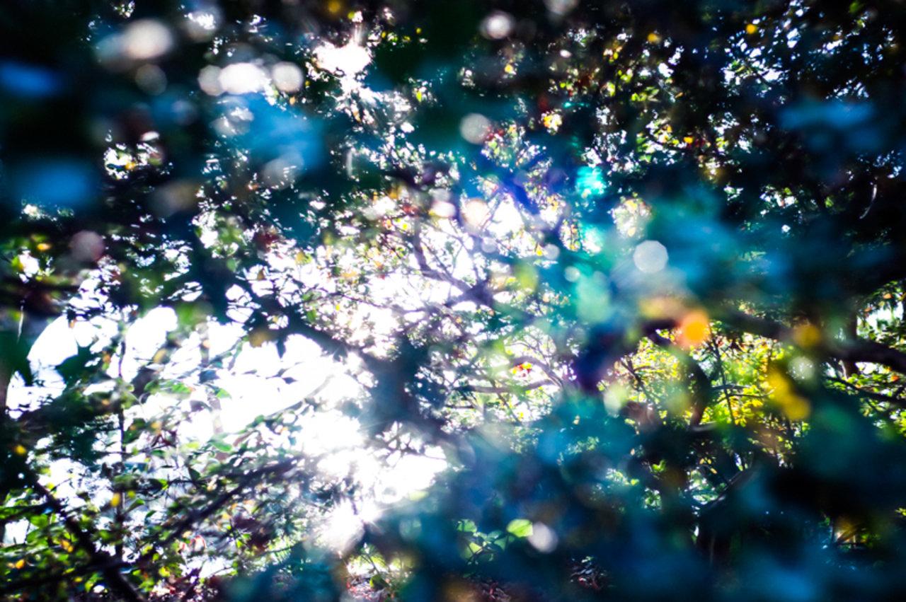 武田陽介  「074418」2012年  LightJet Print  © Yosuke Takeda  Courtesy of Taka Ishii Gallery