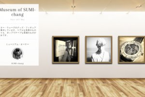 Museum screenshot user 2110 b864728d b281 4106 822e a507fff4d95c