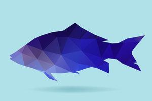 Fish polygon silhouette
