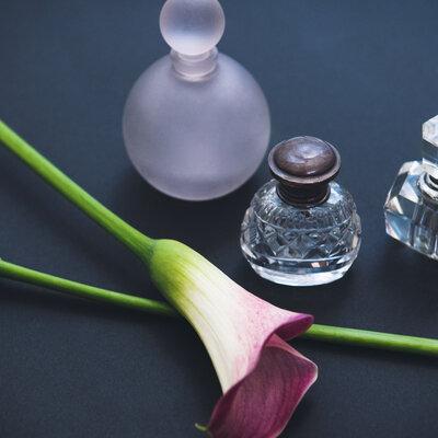 【本物の香りを見極められるために】第4回 香りのピラミッドと香調を識って、香りを表現する_image