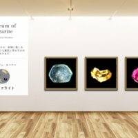 Museum screenshot user 4660 0816e332 bc25 4f45 b850 5d43e52877ae