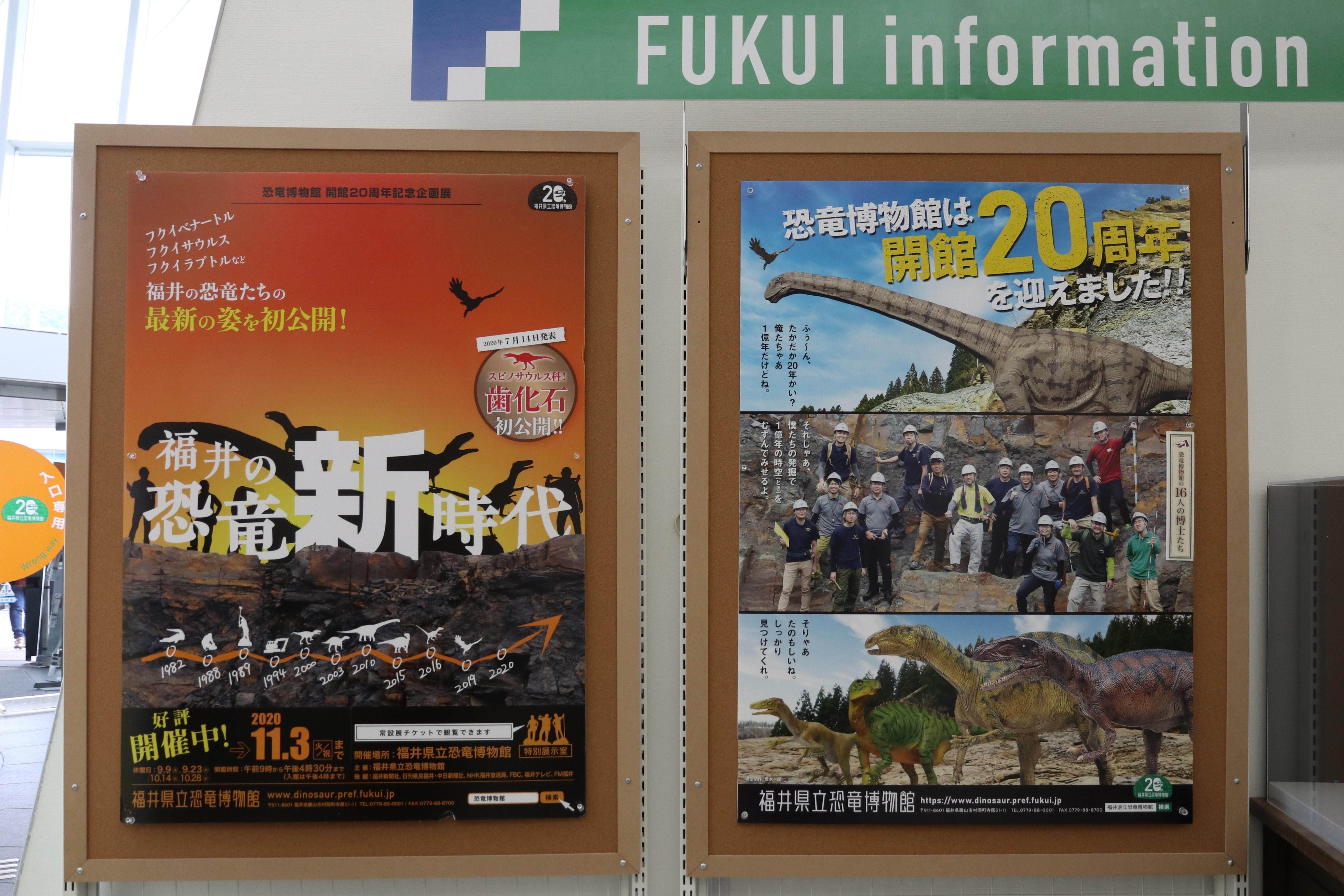 博物館 恐竜 福井 県立